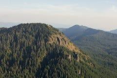 Iron Mountain-Wanderung in Oregon Lizenzfreie Stockbilder