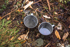 Iron mugs are on the ground in the forest. Background Stock Photos