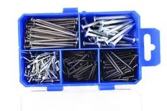 Iron nails Stock Image