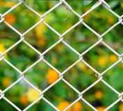Iron net Stock Photos
