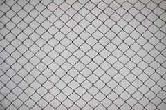 Iron net and white cement wall Royalty Free Stock Photos