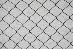 Iron net and white cement wall Royalty Free Stock Image