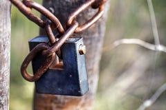 Iron padlock Stock Images