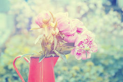 Iron pitcher with silky pink peonies Royalty Free Stock Image