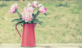 Iron pitcher with silky pink peonies Royalty Free Stock Photo