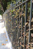 Iron railings bordering a London garden square in Autumn Stock Photography
