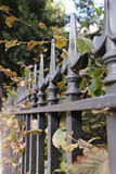 Iron railings bordering a London garden square in Autumn. Iron railings bordering a London garden square or park, in Autumn (selective focus Royalty Free Stock Images