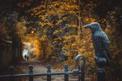 Iron raven on the gate stock photos