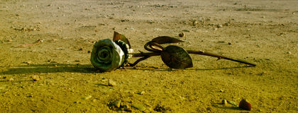 Iron rose Royalty Free Stock Photography