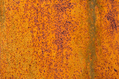 Iron sheet. A large sheet of iron corroded with rust Stock Photography