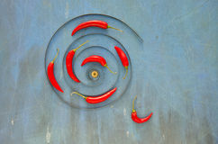 Iron spiral and red hot chili peppers Royalty Free Stock Photos