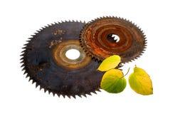 Iron subject. Old cutting disks of a circular saw Stock Image