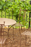 Iron table in garden Stock Images