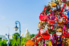 Iron tree of wedding padlocks on Luzhkov bridge Stock Image