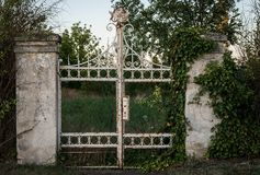 Iron, Wall, Gate, Grass Royalty Free Stock Images
