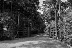 Gates open to the forest royalty free stock images