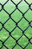 Iron wire fence Royalty Free Stock Image