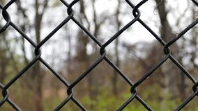 Iron wire fence outdoor stock video footage
