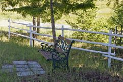 Iron and wood seat in the shade. An iron and wood seat sits under the shade of a evergreen by a painted white wood fence stock photo