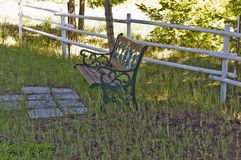 Iron and wood seat in the shade. An iron and wood seat sits under the shade of a evergreen by a painted white wood fence stock image