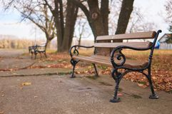 Unique bench in park. Stock Image