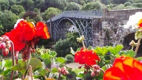 Ironbridge с цветками Стоковые Фотографии RF
