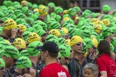 Ironman瑞士游泳开始2014年 免版税图库摄影