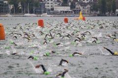 Ironman瑞士游泳2014年 库存图片