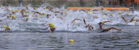 Free Ironman Philippines Swimming Race Start Stock Photos - 21137693
