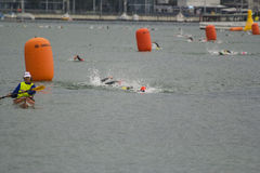 Ironman Zwitserland zwemt 2014 Royalty-vrije Stock Foto