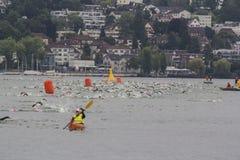 Ironman Zwitserland zwemt 2014 Stock Afbeelding