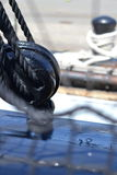 Ironsides idoso Imagem de Stock Royalty Free