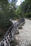 Ironwork railing, Park Guell. Wrought Ironwork railing, Park Guell royalty free stock photos