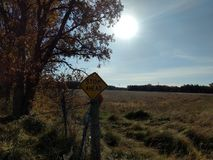 Irony. Beautiful outdoor  stop sign Royalty Free Stock Photos
