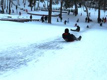 Sledging, winter sports and winter activities in the park royalty free stock image