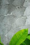 Irradiando os círculos de sobreposição abstraem a textura vertical do fundo com a folha verde na parte inferior foto de stock royalty free