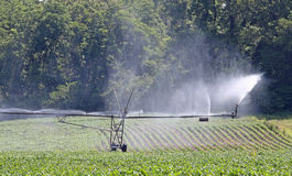 Irragation System Stock Images