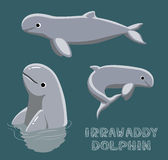 Irrawaddy Dolphin Cartoon Vector Illustration Royalty Free Stock Photos