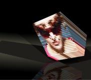 Irregular geometrical form- face. Three-dimensional irregular geometrical form- face -vector Royalty Free Stock Photography