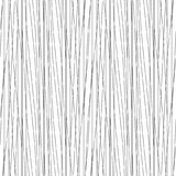 Irregular stripes seamless pattern. Vector texture. Irregular stripes seamless pattern. Repeating vector texture in black and white colors. thread background Stock Image