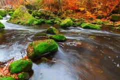 Irrel каскадирует на реке Pruem в Eifel, Германии стоковое фото rf