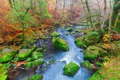 Irrel каскадирует на реке Pruem в Eifel, Германии стоковое фото