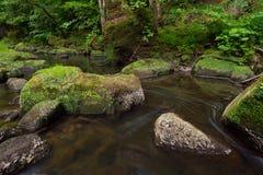 Irreler河在德国,在春天期间 库存照片