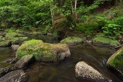 Irreler河在德国,在春天期间 库存图片