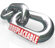 Irreplaceable 3d Word Chain Links Vital Essential Needs Stock Photography