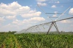 Irrigação foto de stock royalty free