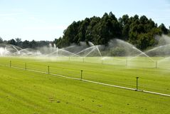 Irrigação Fotografia de Stock Royalty Free
