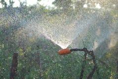 Irrigação abundante da terra agrícola no tempo árido imagem de stock royalty free