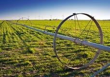 Irrigação da água em um campo verde rural fotografia de stock