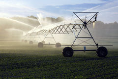 Irrigação da colheita Fotografia de Stock Royalty Free